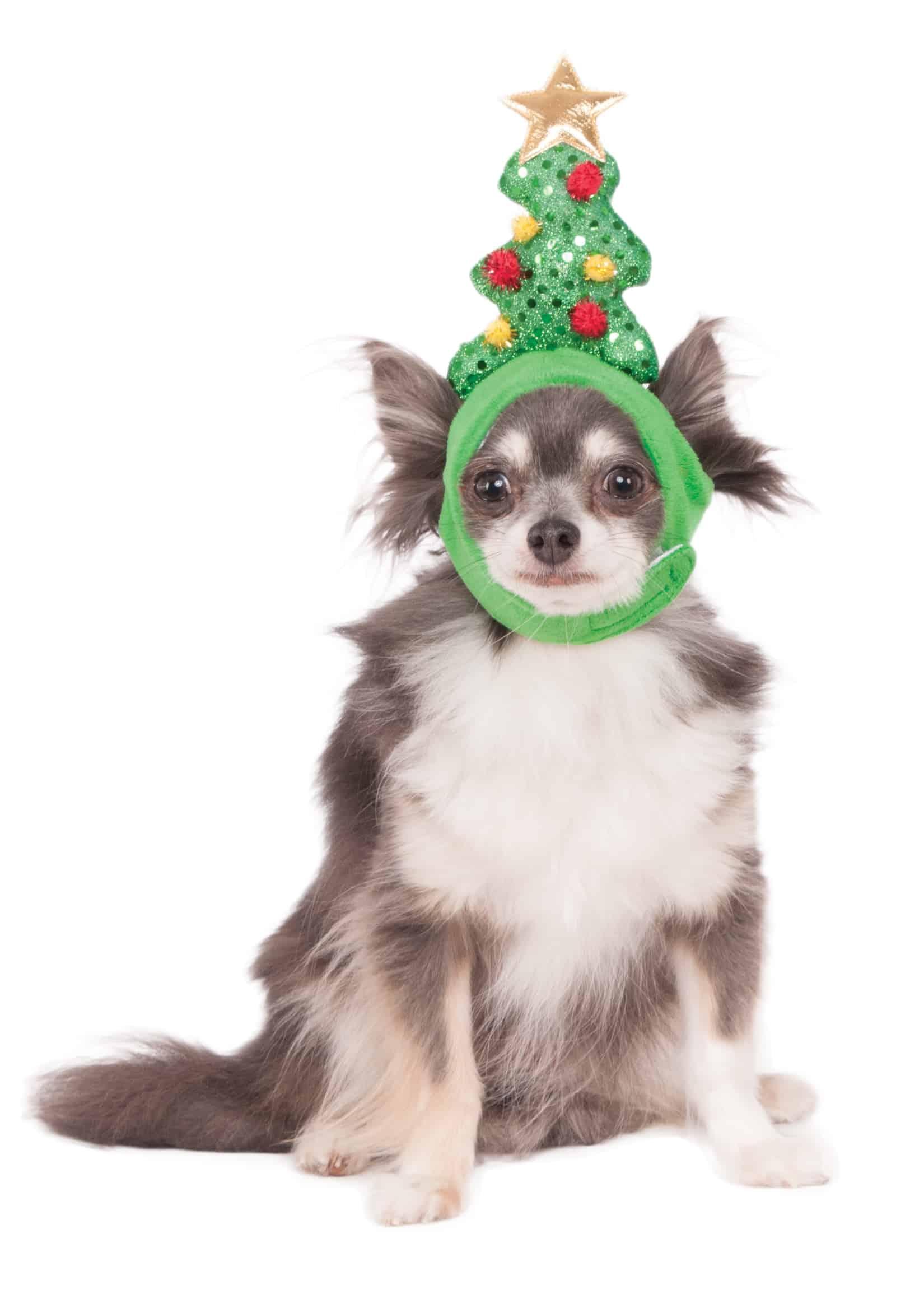 Christmas Tree Light Up Headband Dog Cat Christmas Costume Pet Costume Center