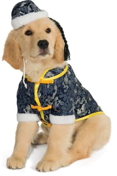 Asian Oriental Dog Costume