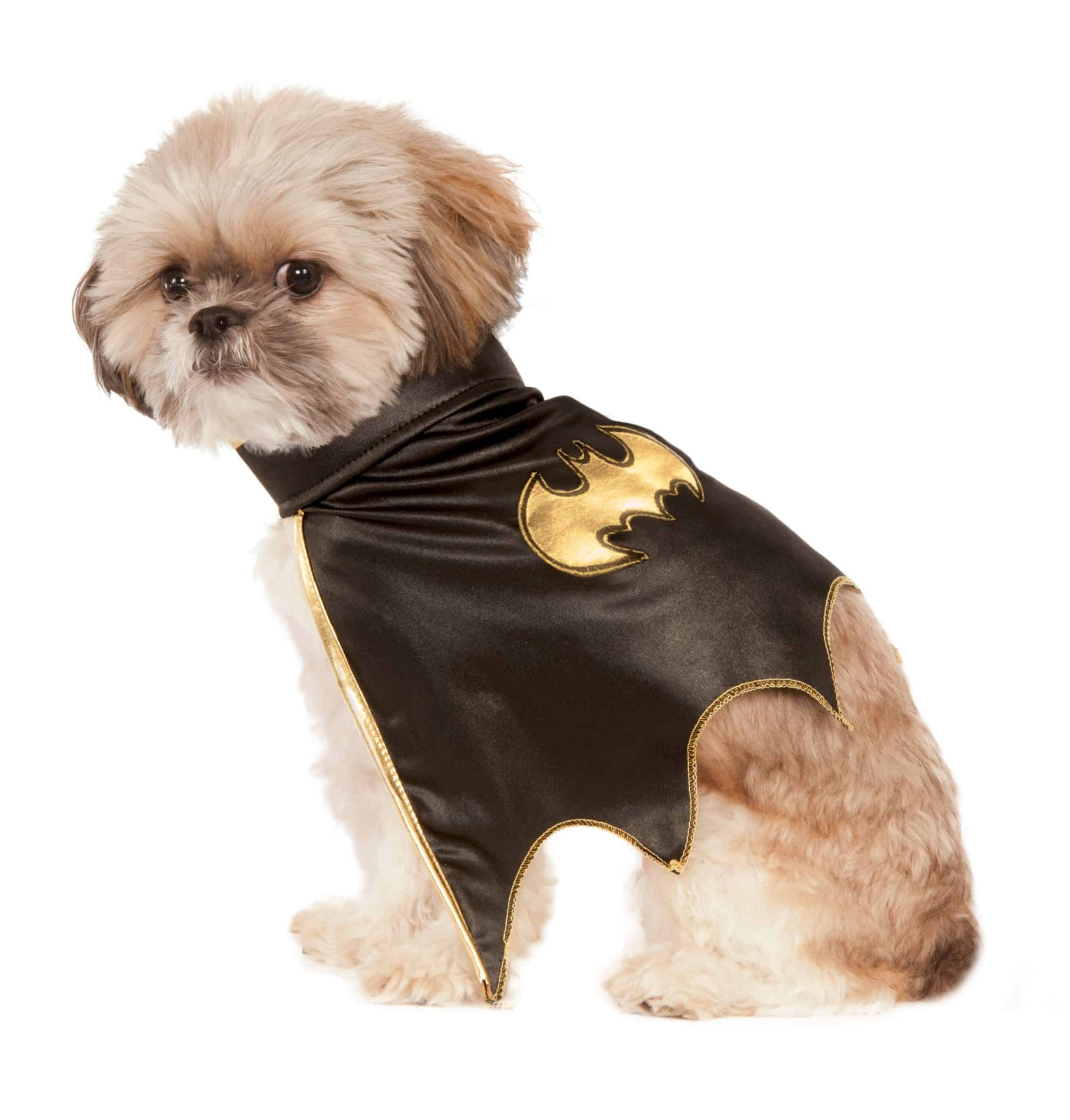Batgirl Cape Dog Costume