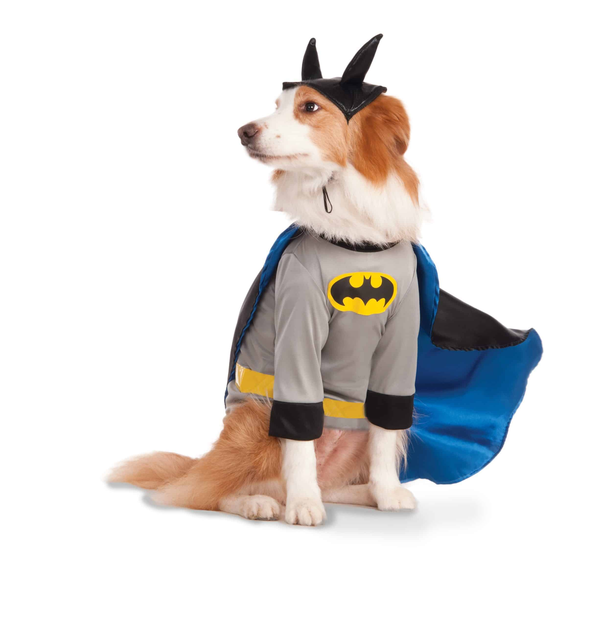 Big Dog Batman Costume