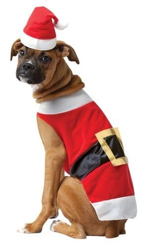 Big Dog Santa Costume