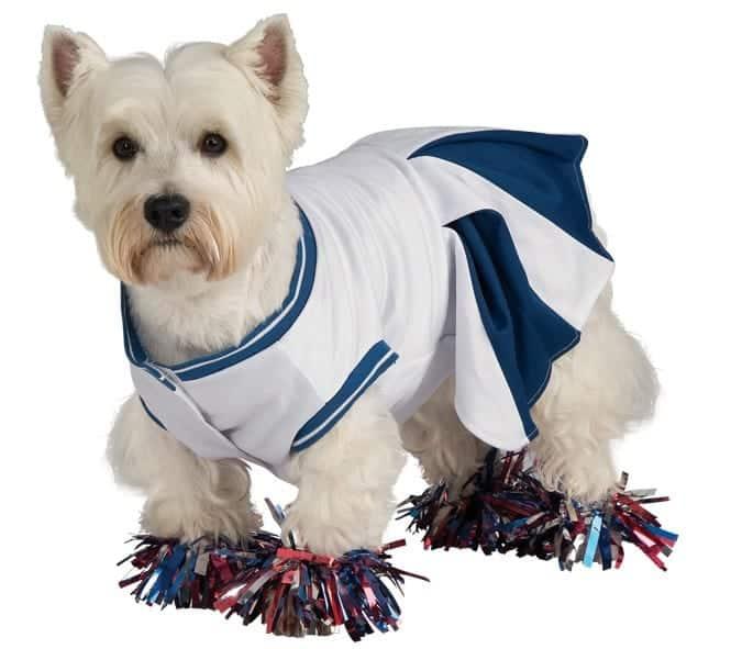 Blue Cheerleader Dog Costume
