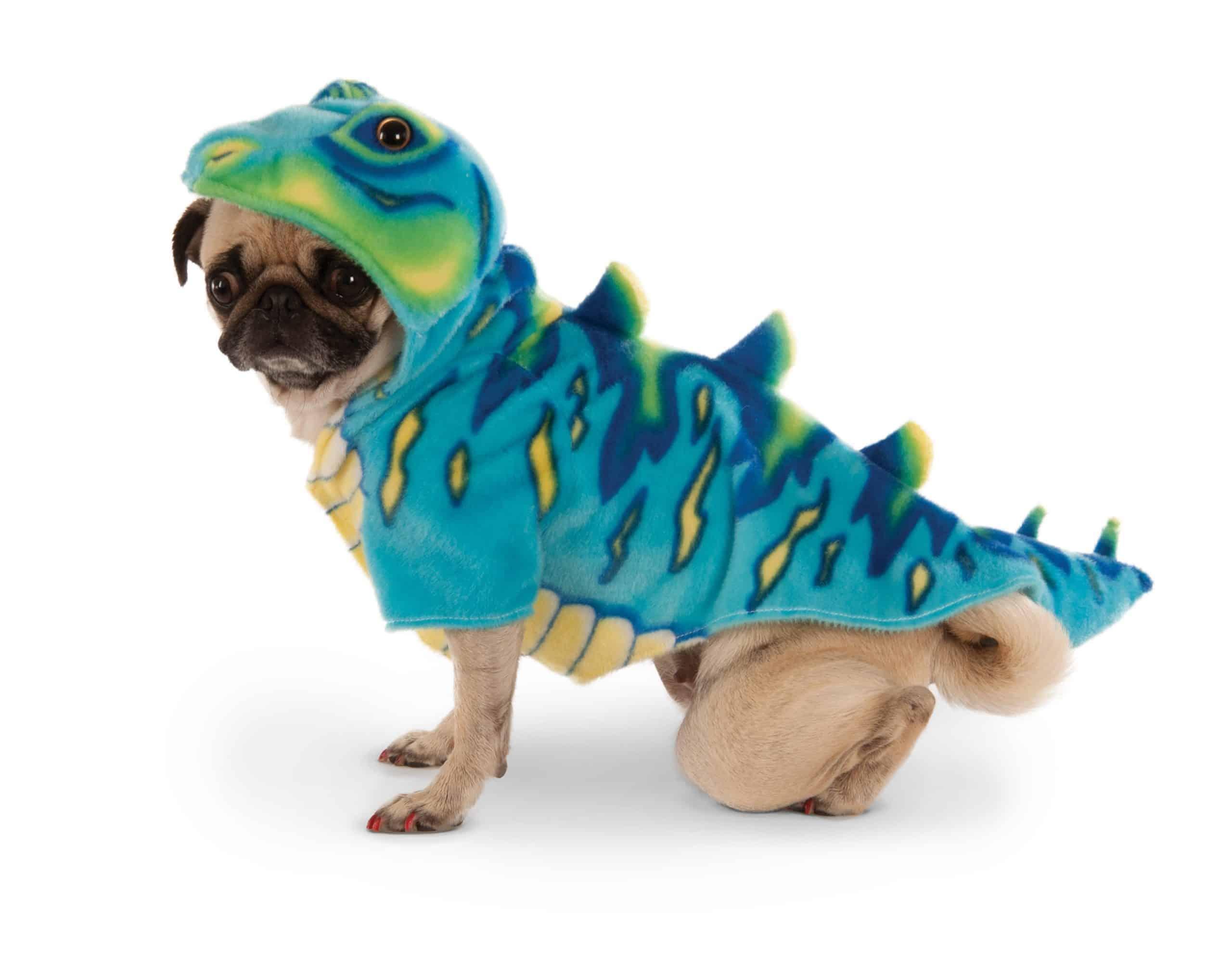 Blue Dino Dog Costume
