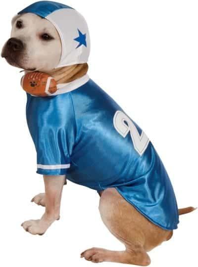 Blue Pinstripe Baseball Player Dog Costume
