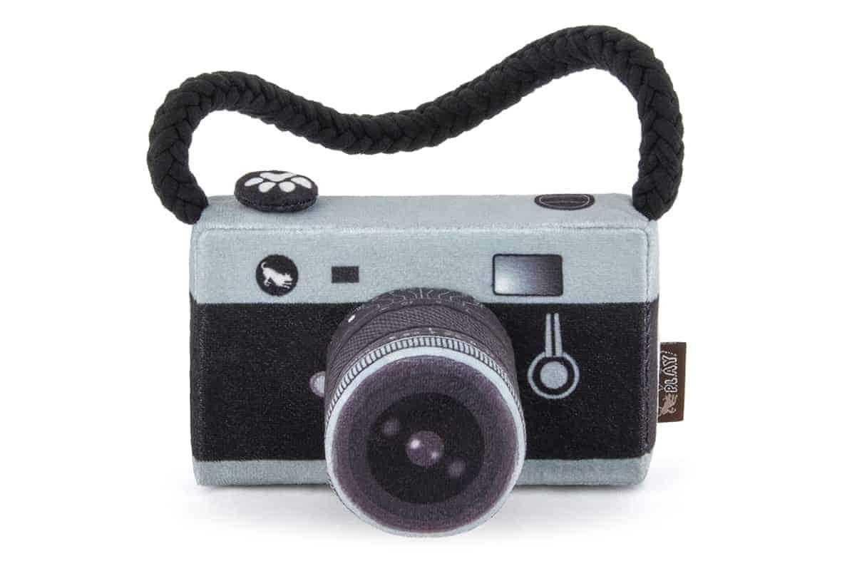 Camera Dog Toy Accessory