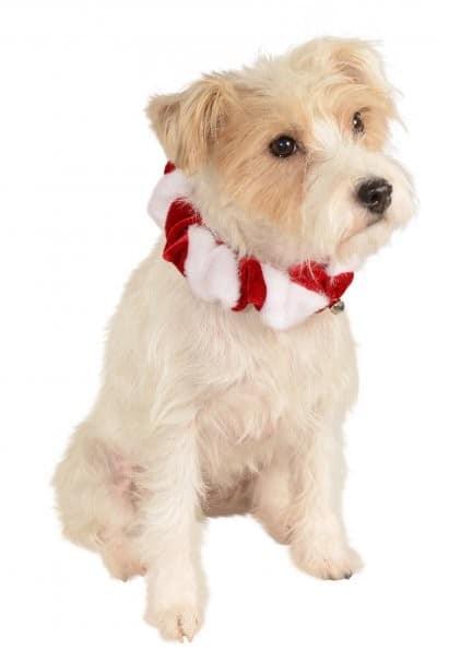 Candy Cane Bell Dog Collar