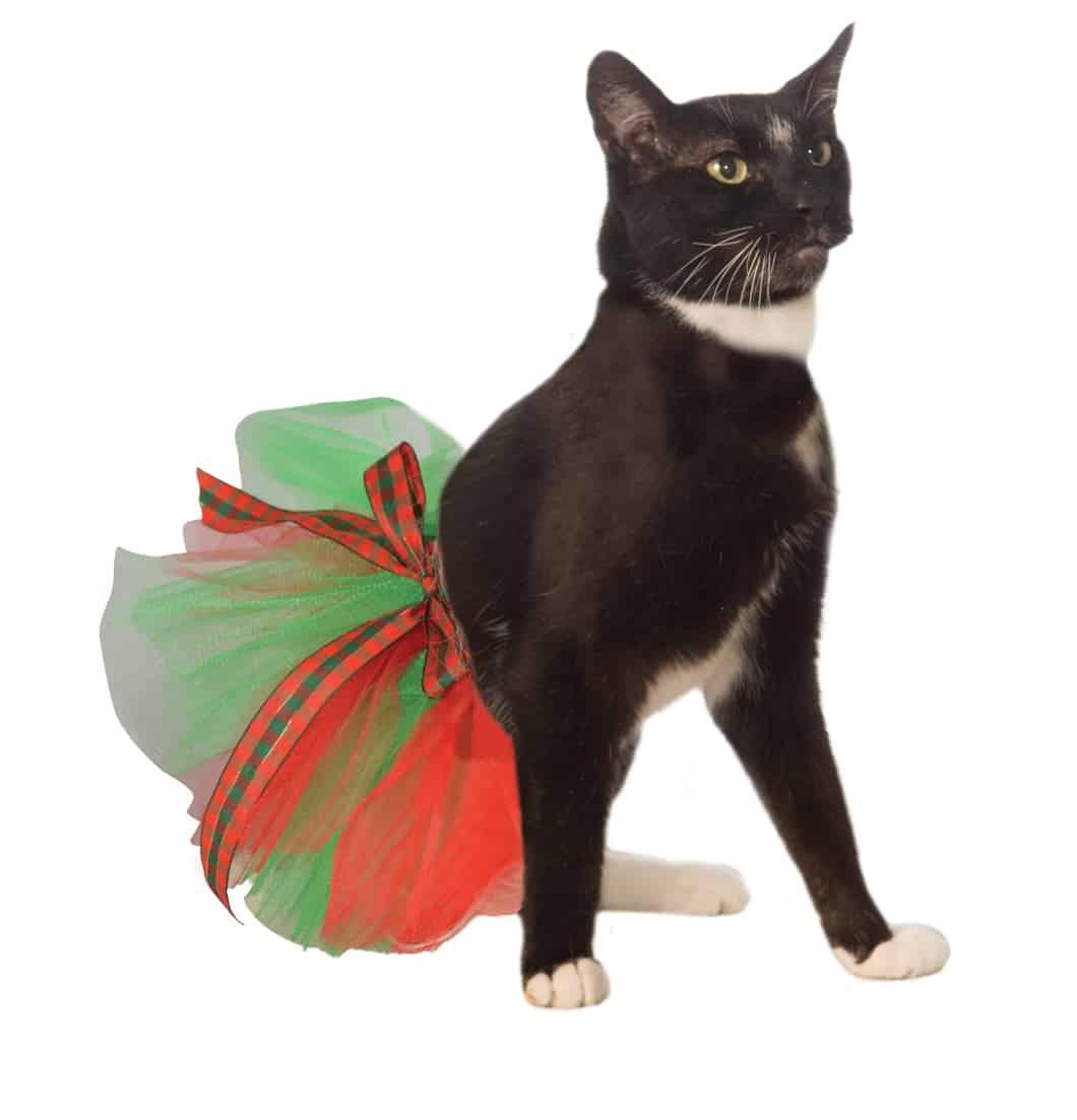 Christmas Dog Cat Tutu Costume