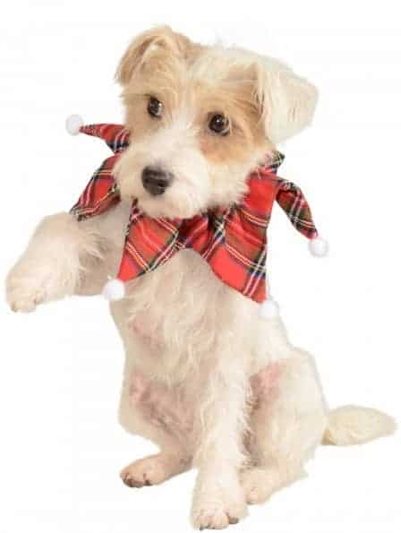 Christmas Plaid Collar