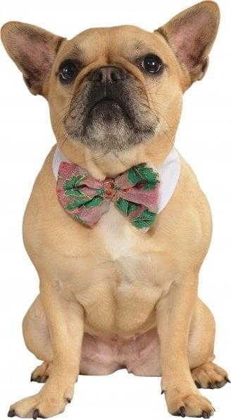 Dog Bow Tie Christmas Poinsettia Large