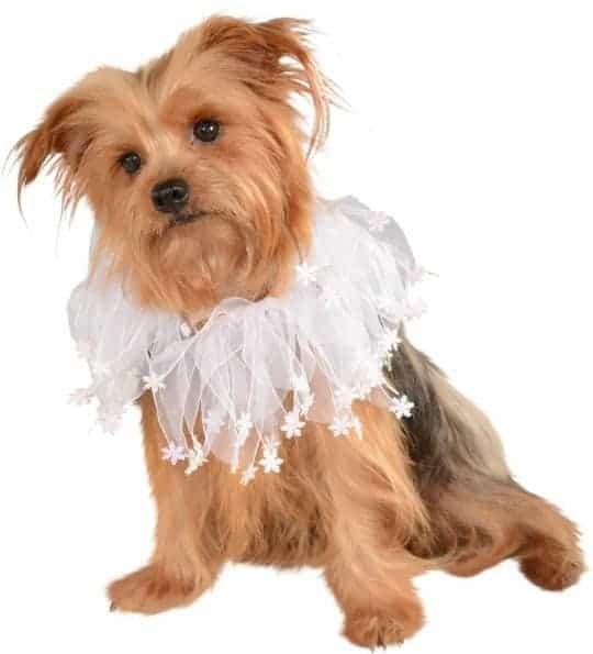 Christmas Snowflakes Dog Collar