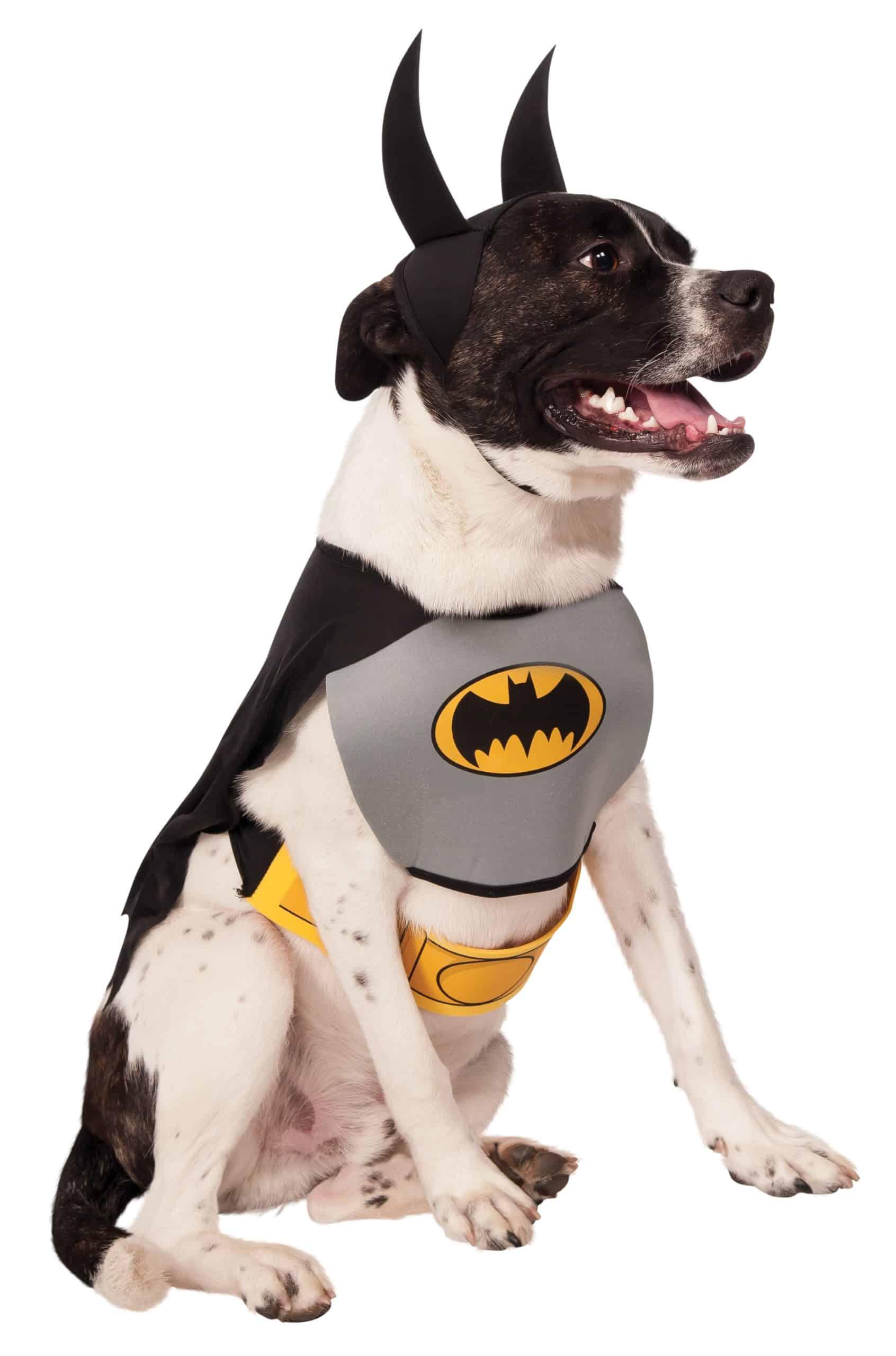 Classic Batman Dog Costume