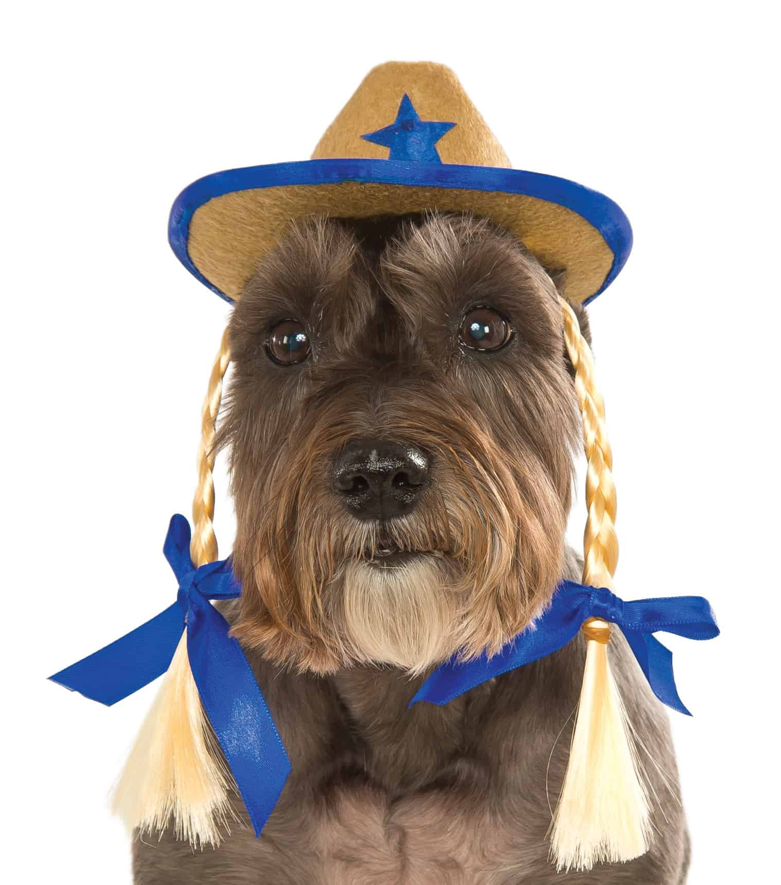 Cowgirl Hat With Braids Dog Costume