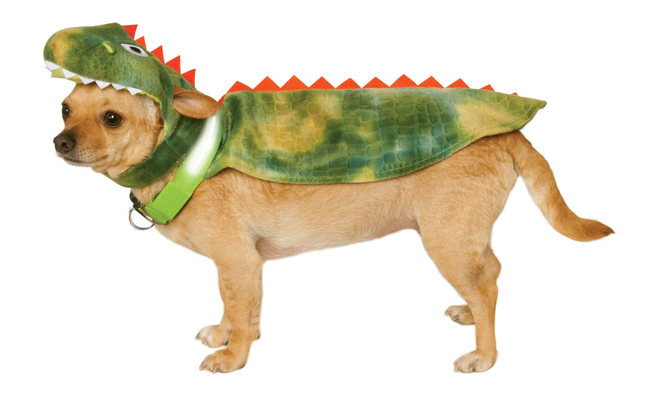 Dinosaur Dog Cape with Headpieece