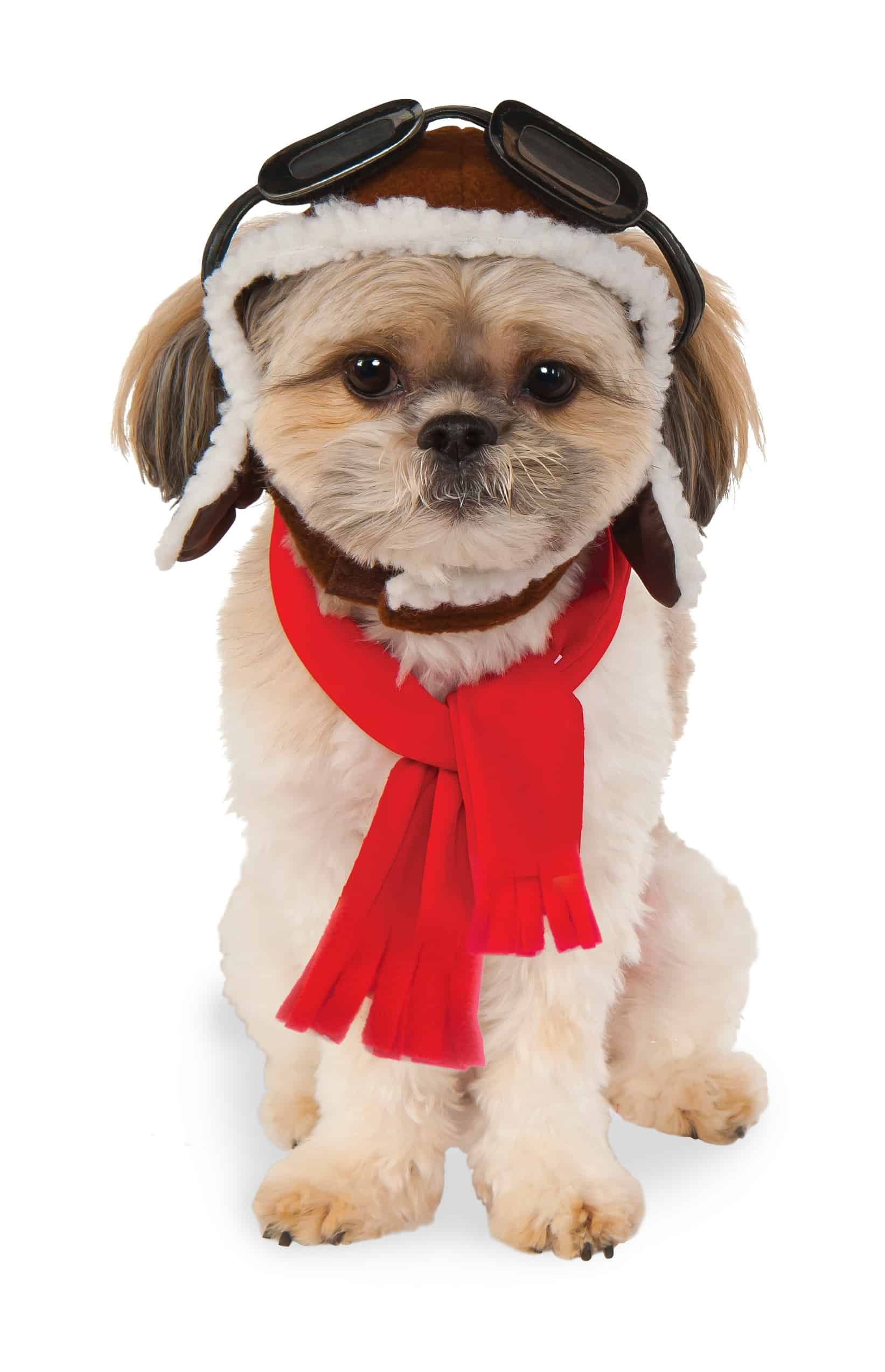 Aviator Hat And Scarf Set Dog Costume