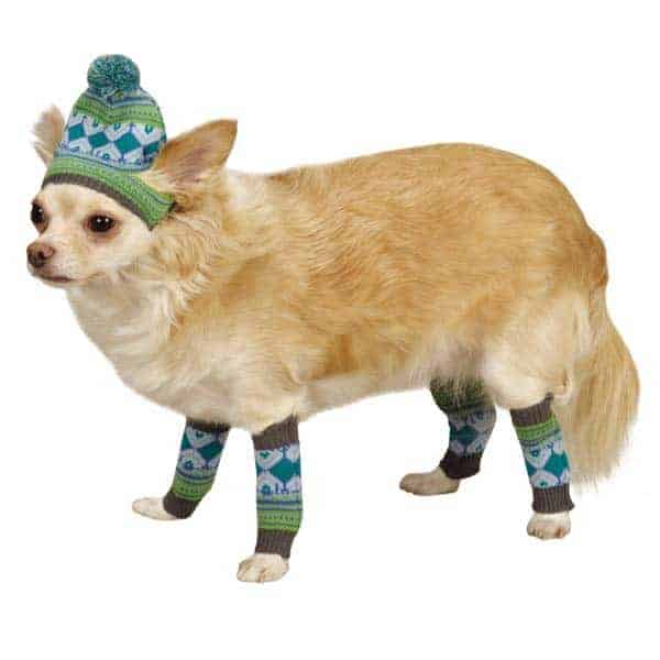 Dog Hat & Leg Warmers (Raspberry / Orange)