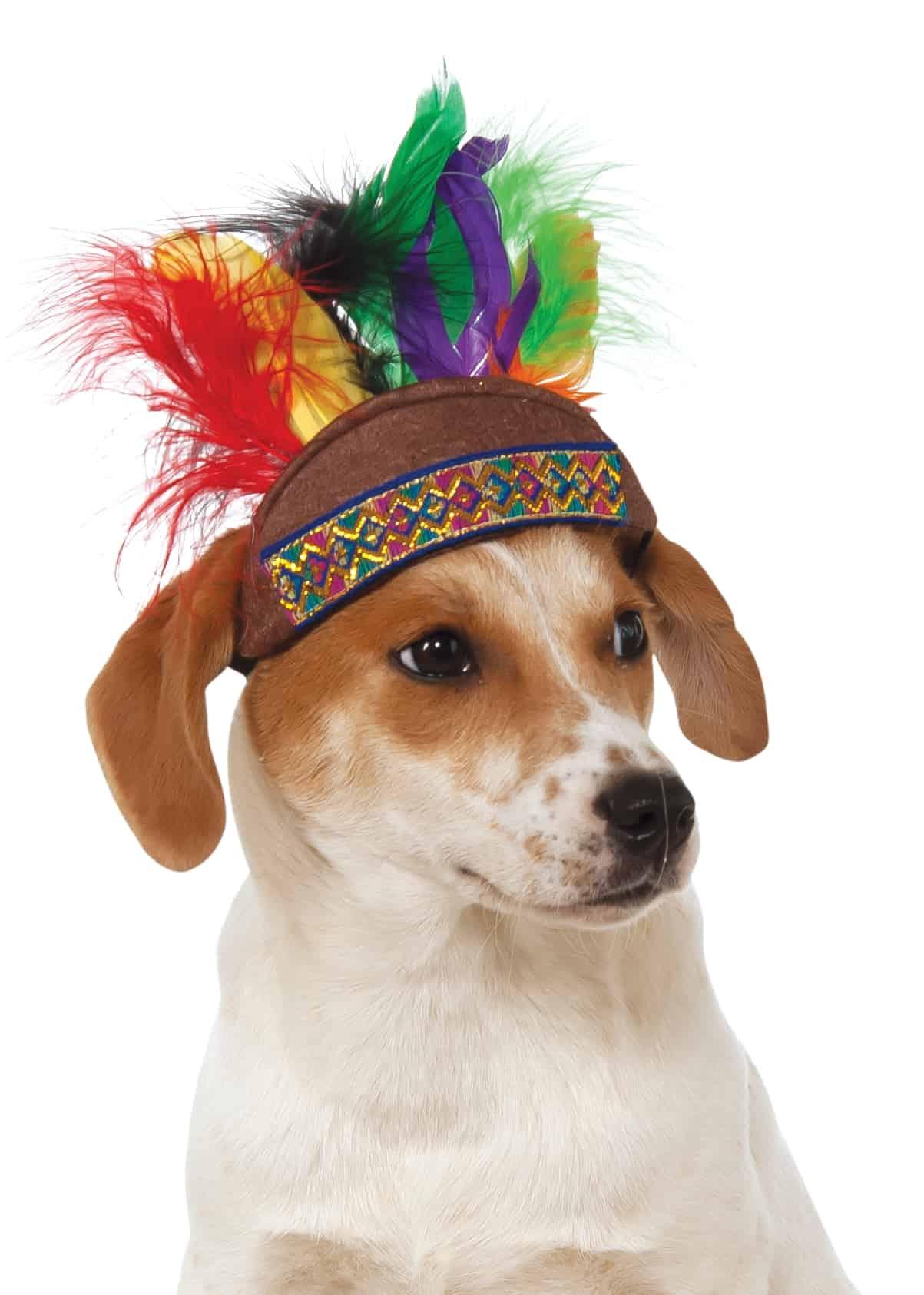 Dog Indian Headdress