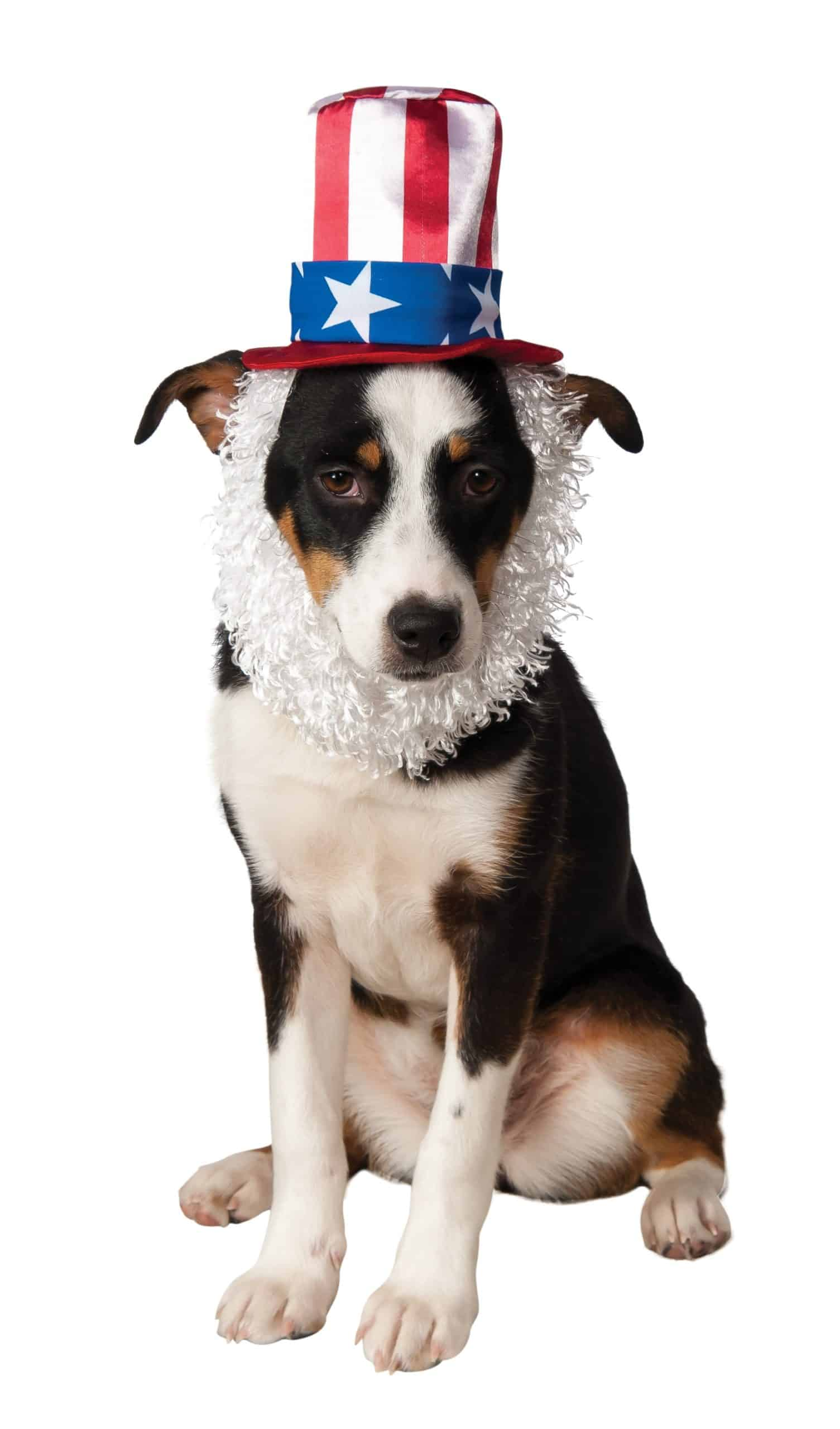 Dog Uncle Sam Hat with Beard