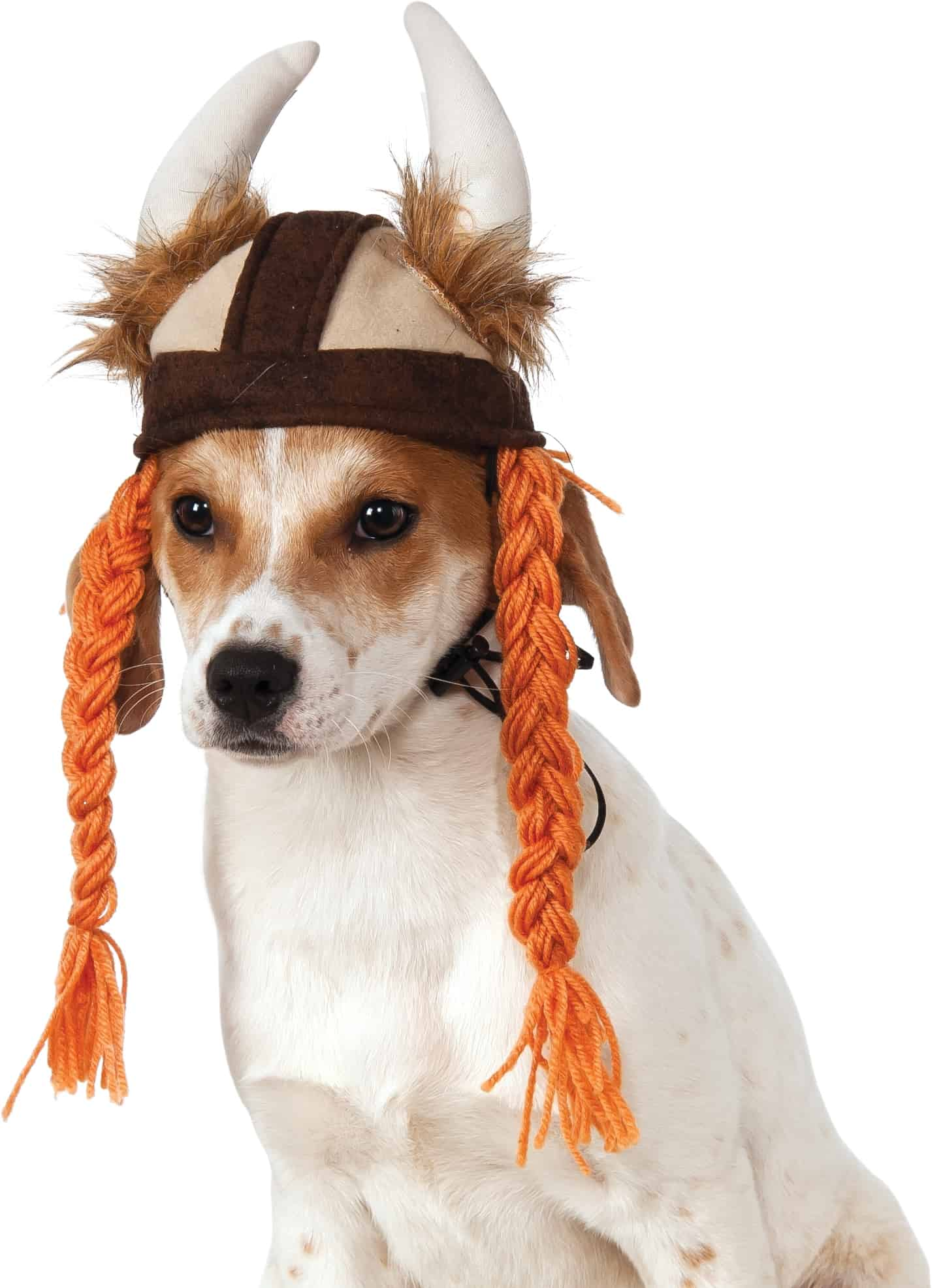 Dog Viking Hat with Braids