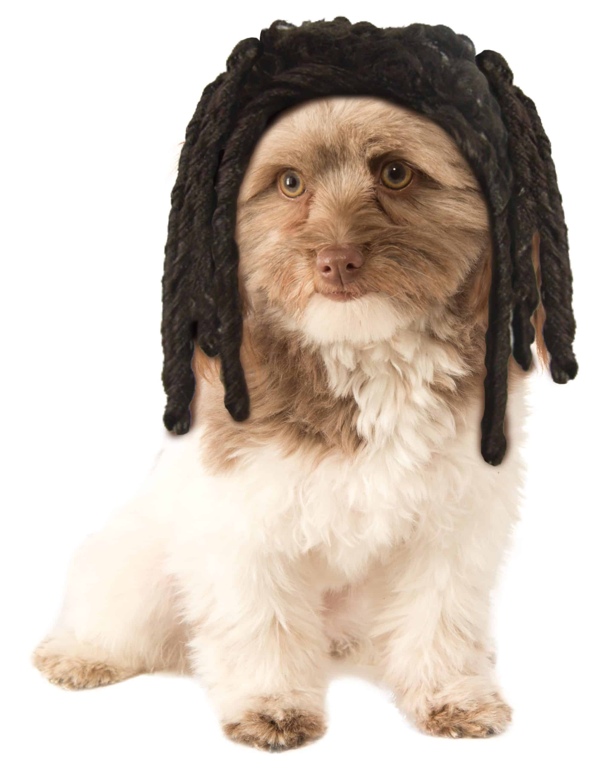 Dreadlocks Pet Wig