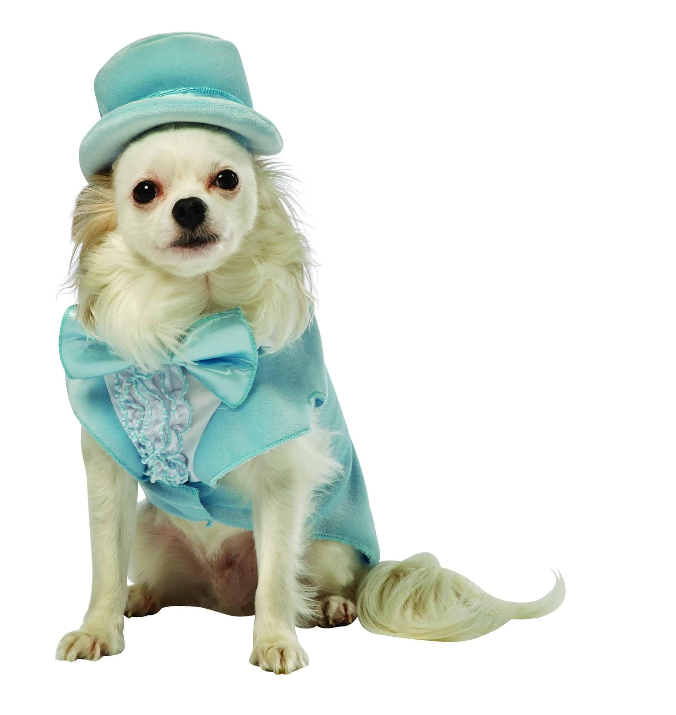 Dumb and Dumber Harry Dunne Tuxedo Dog Costume