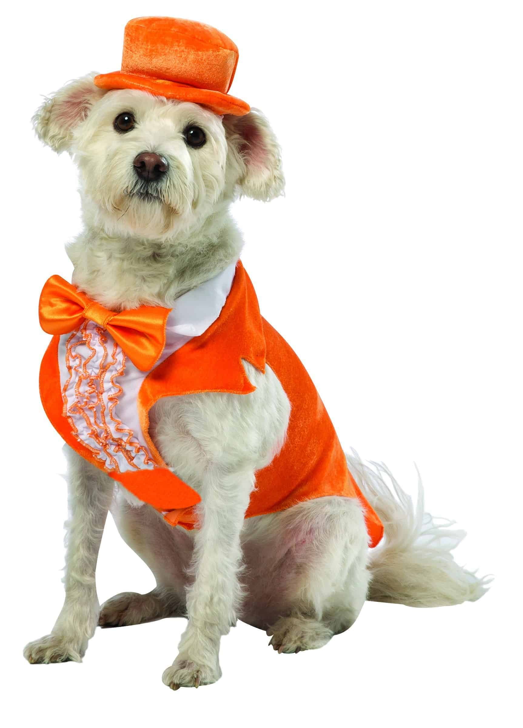Dumb and Dumber Lloyd Tuxedo Dog Costume