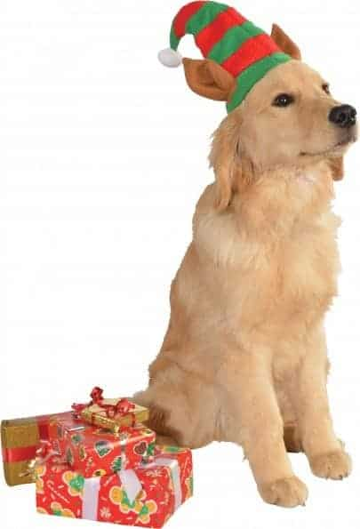Elf Hat with Ears Dog Costume
