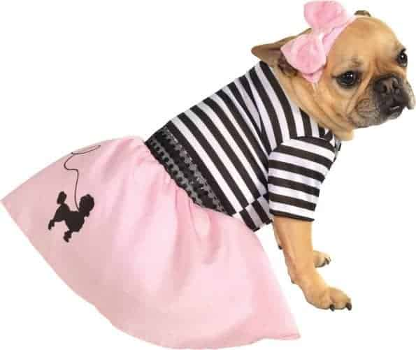 Fifties Girl Dog Costume