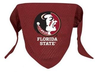 Florida State Dog Bandana - Mesh