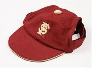 Florida State Dog Cap