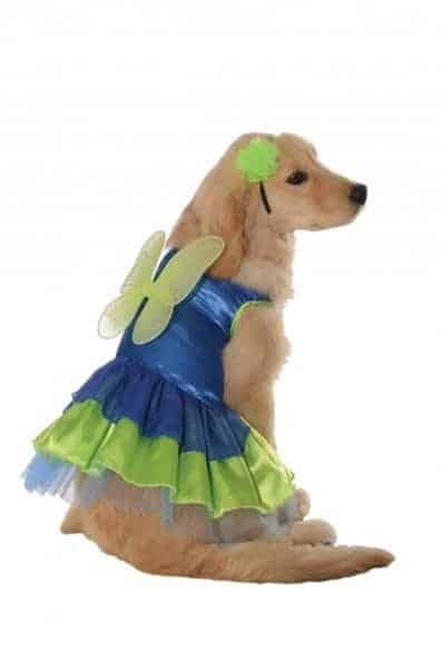 Pixie Pup Dog Costume