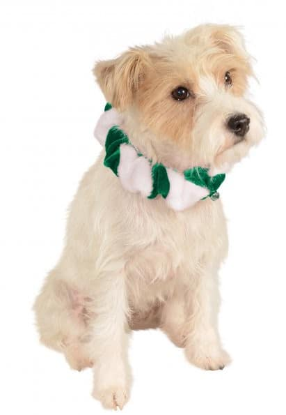 Green Candy Cane Bell Dog Collar