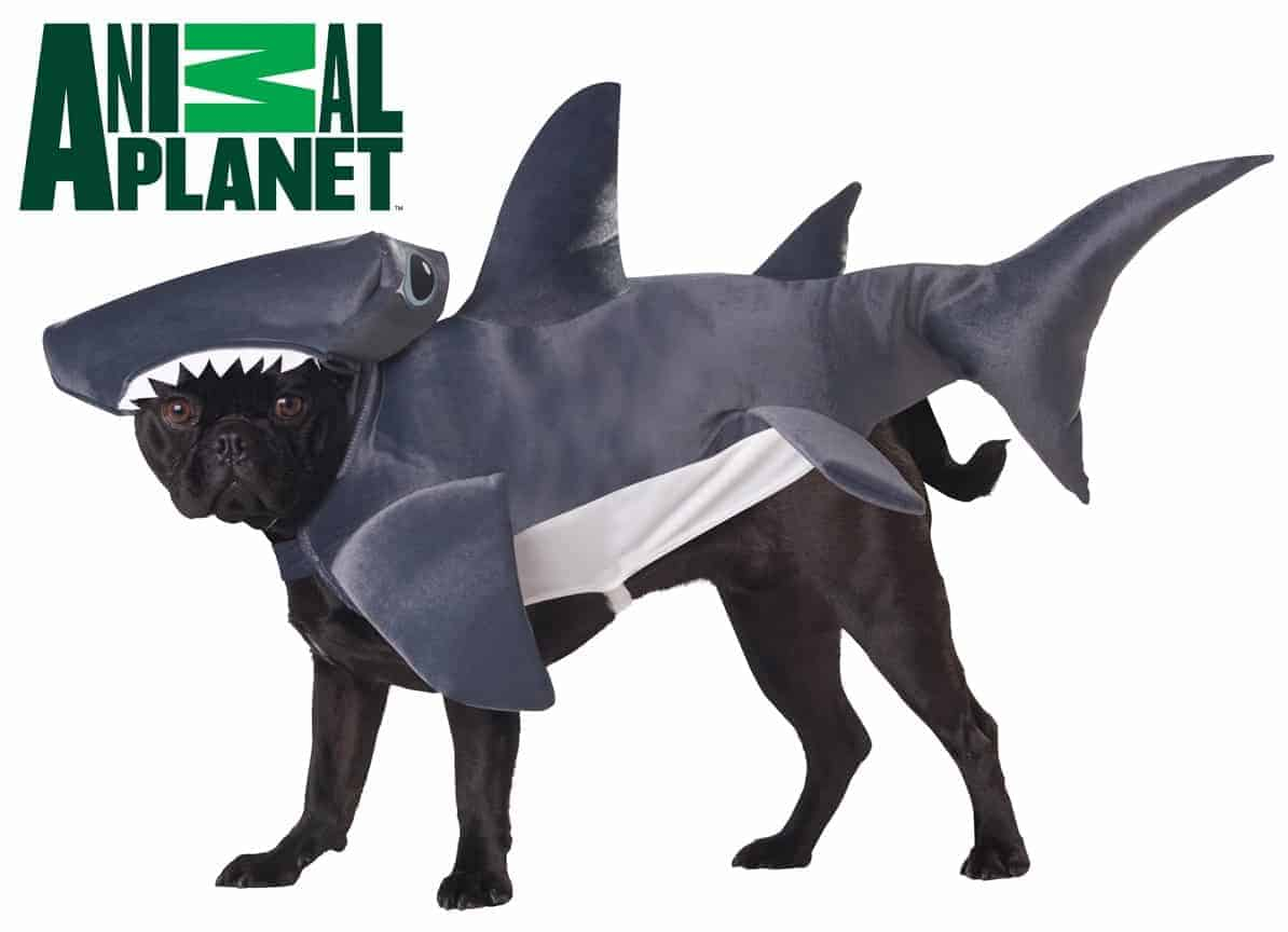 Large Dog Shark Costume Hammerhead Shark Dog Costume