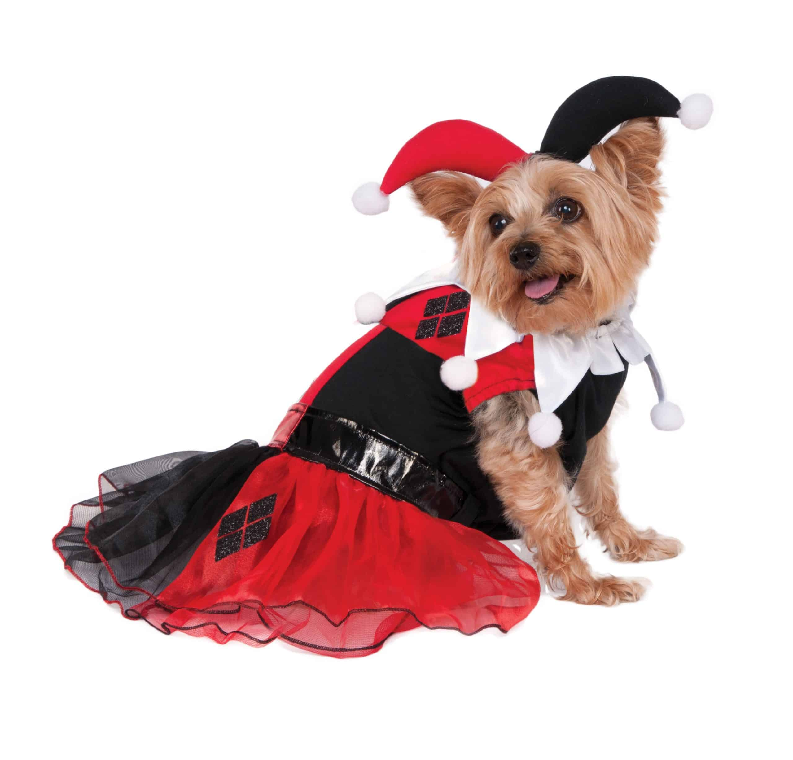 Harley Quinn Tutu Dress Dog Costume