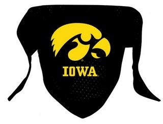 Iowa Hawkeyes Dog Bandana - Mesh