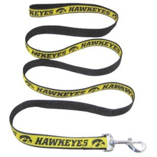 Iowa Hawkeyes Dog Leash - Ribbon