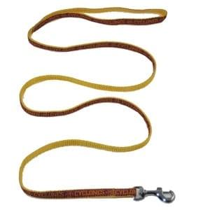 Iowa State Dog Leash - Ribbon