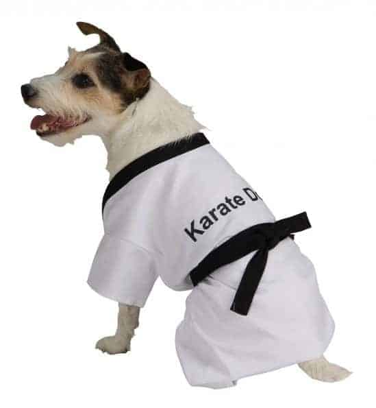 Karate Dog Costume