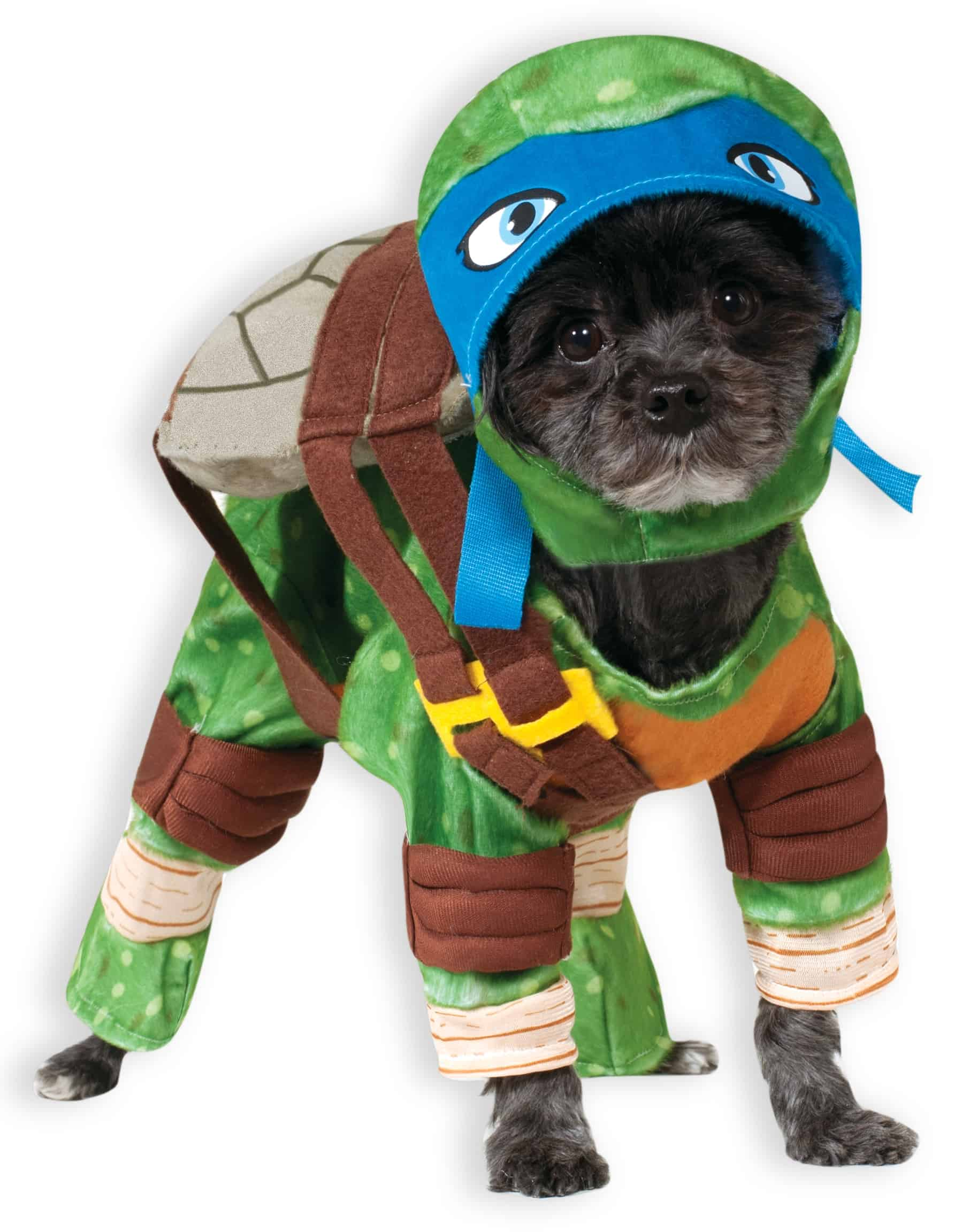 Leonardo Teenage Mutant Ninja Turtle Dog Costume