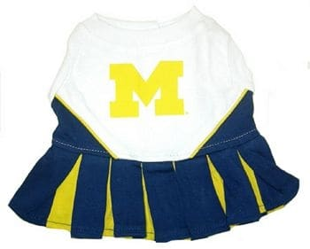 Michigan Wolverines Cheerleader Dog Dress