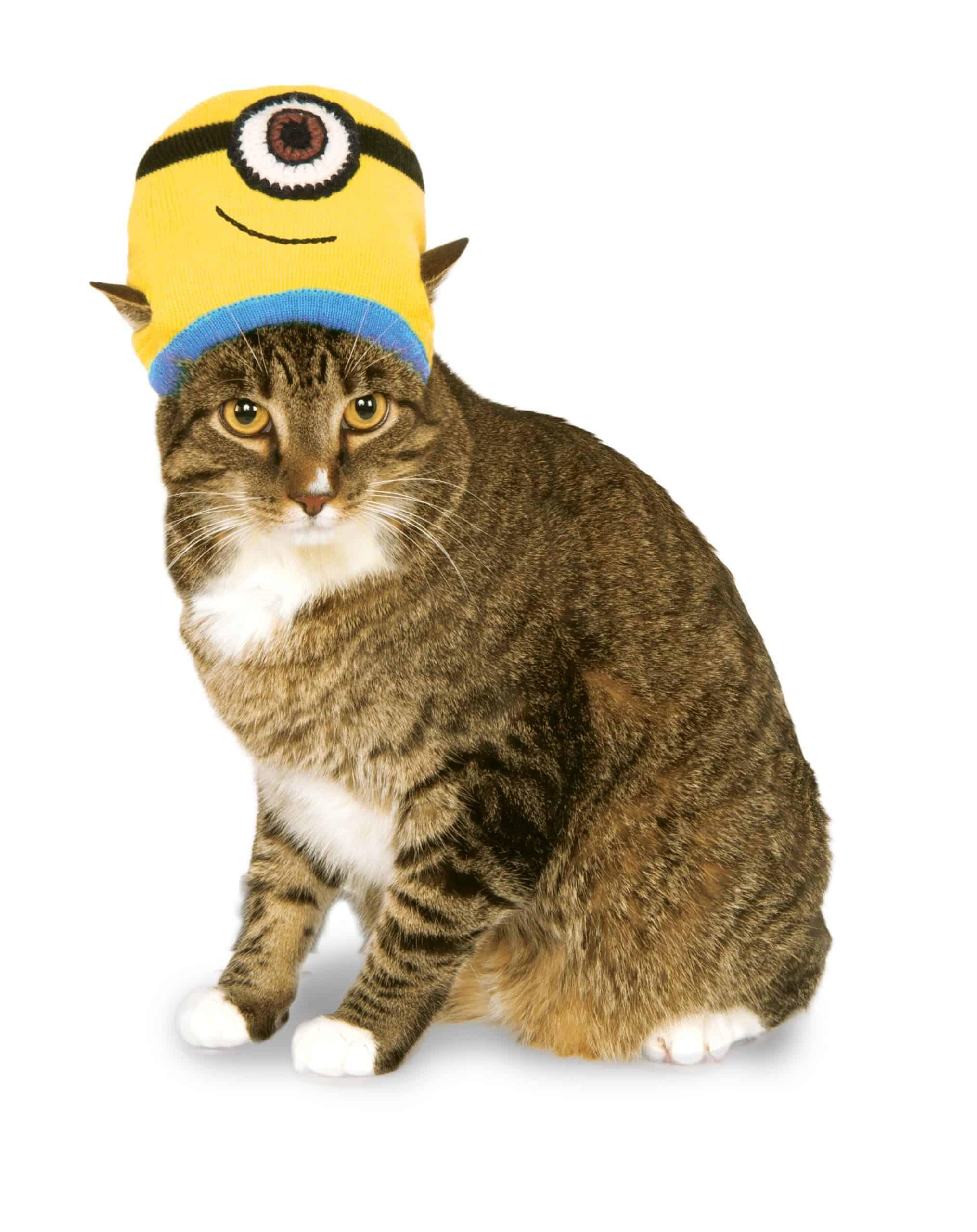 Minion Stuart Knit Hat Cat Costume
