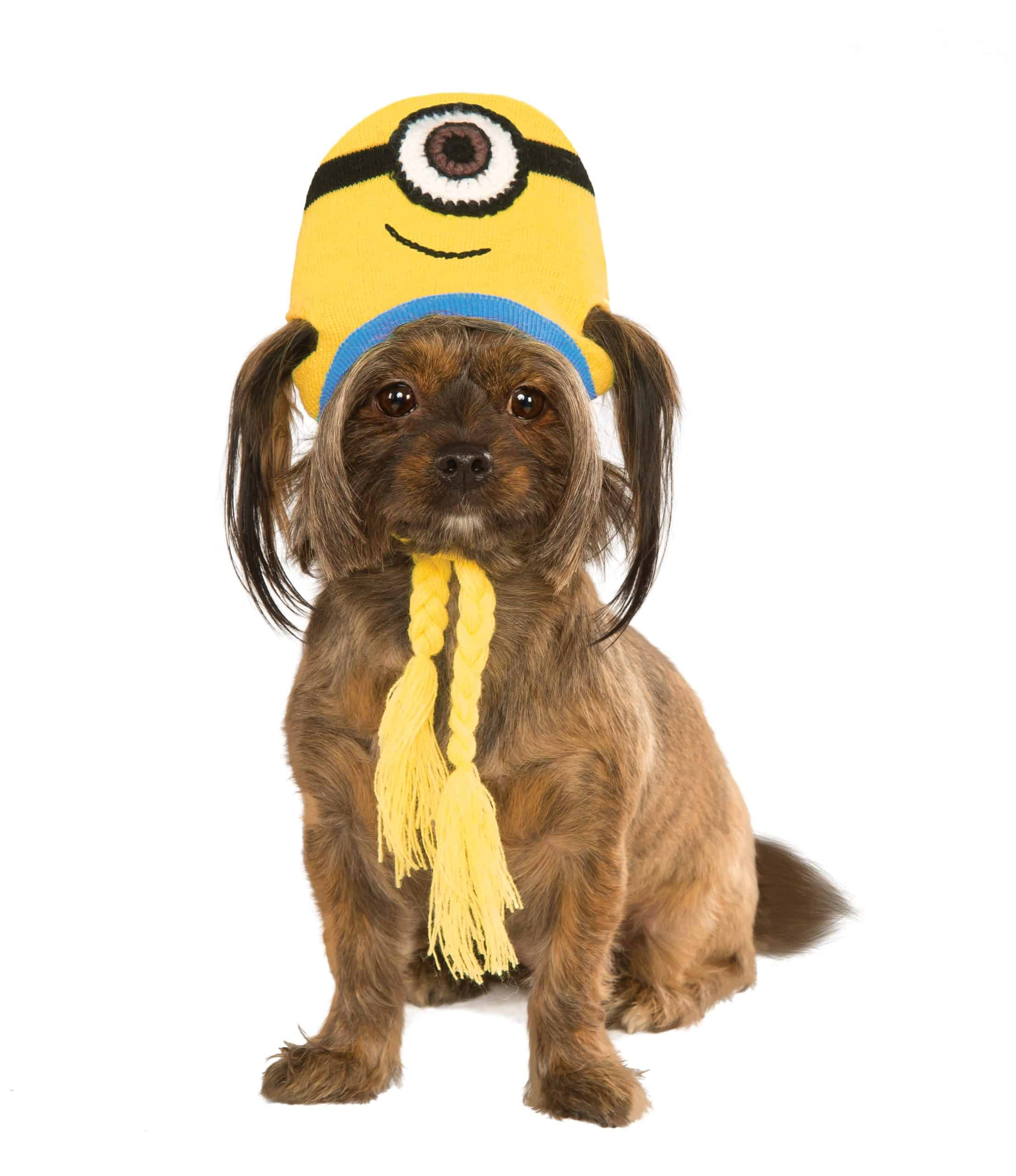 Minion Stuart Knit Hat Dog Costume