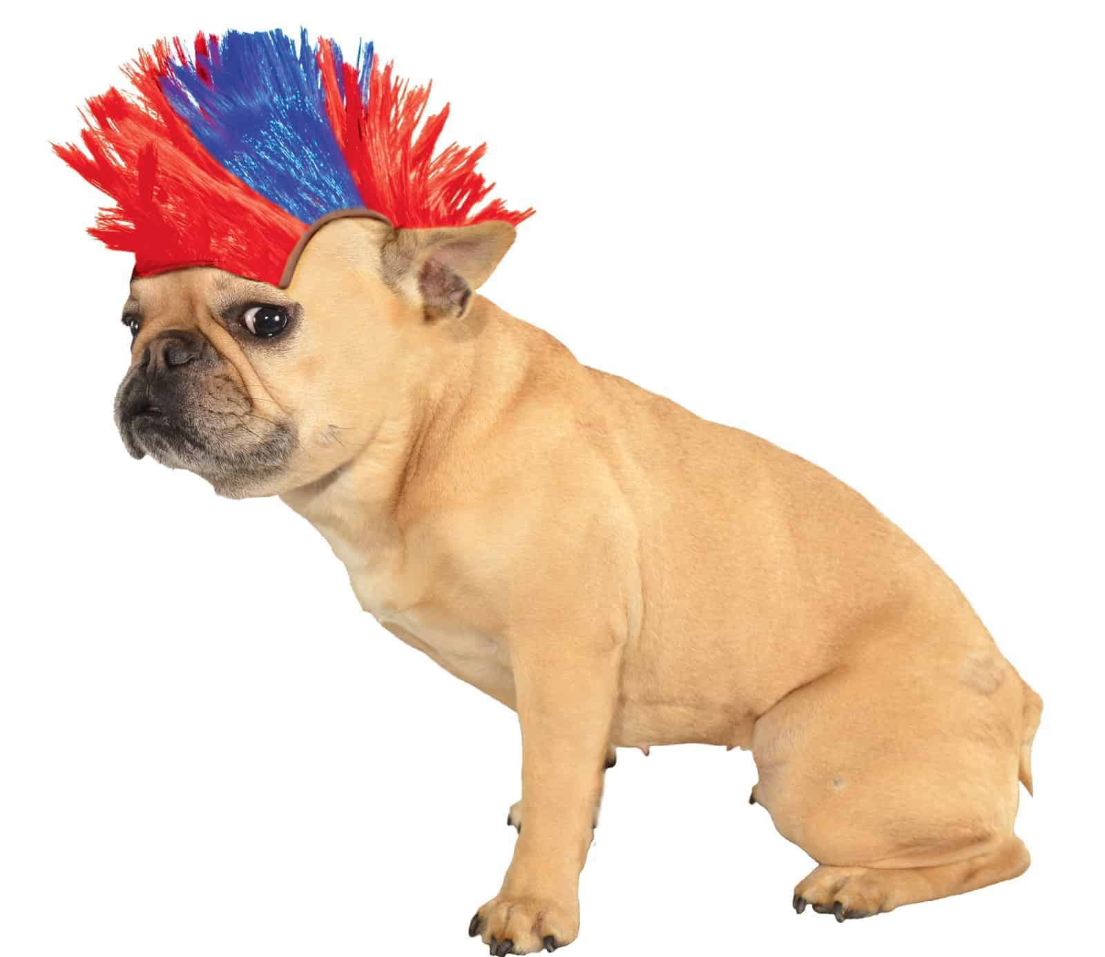 Mohawk Dog Wig- Blue and Red
