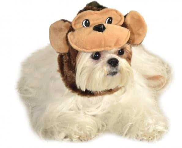 Monkey Headpiece