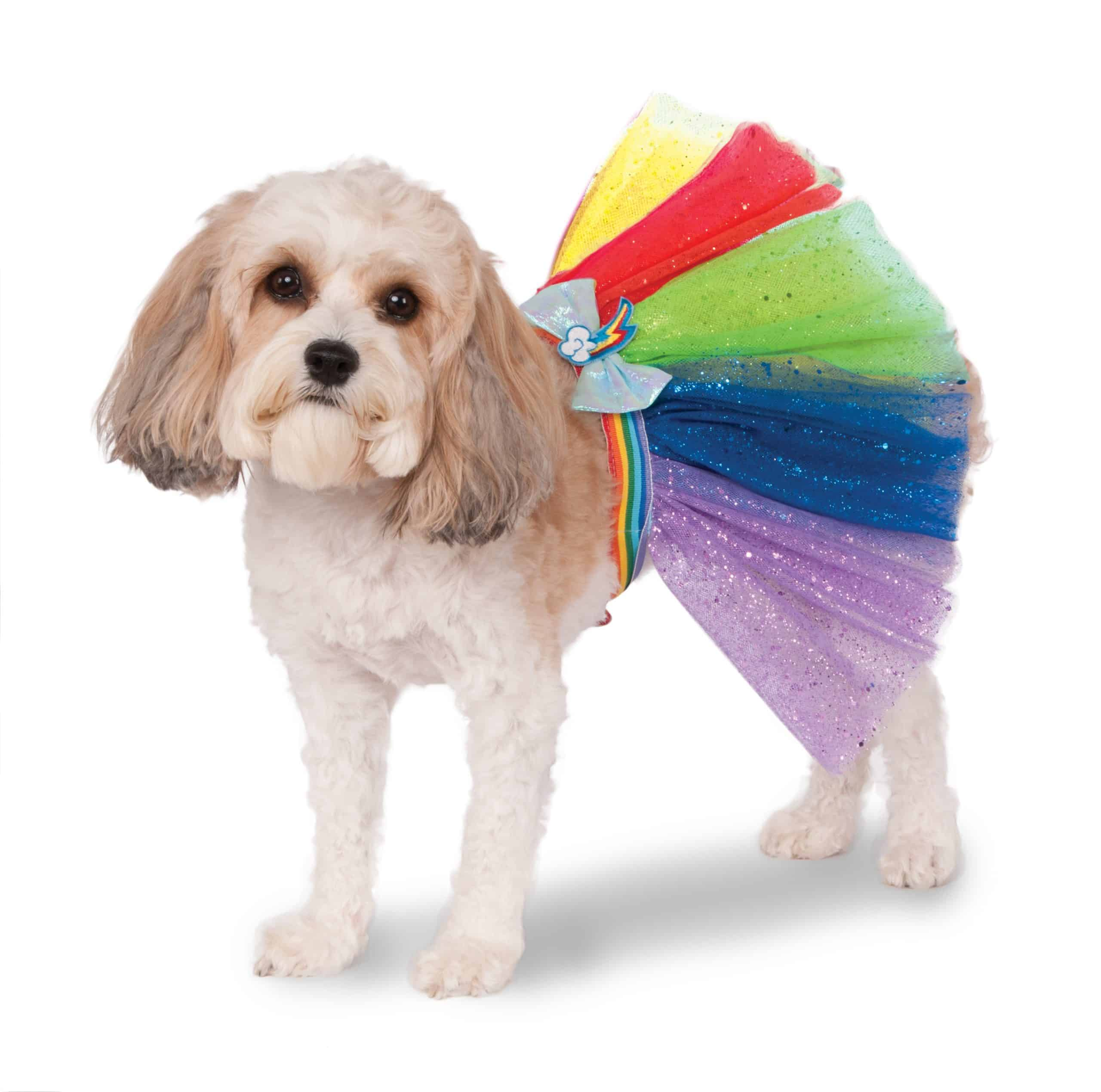 My Little Pony Rainbow Dash Dog Tutu