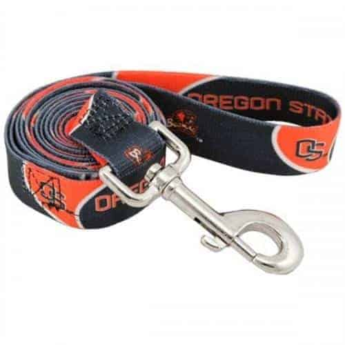 Oregon State Dog Leash