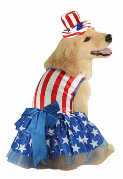 Patriotic Pooch Dog Costume