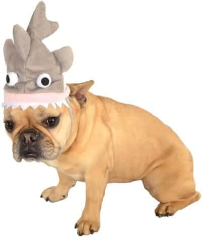 Pet Shark Hat