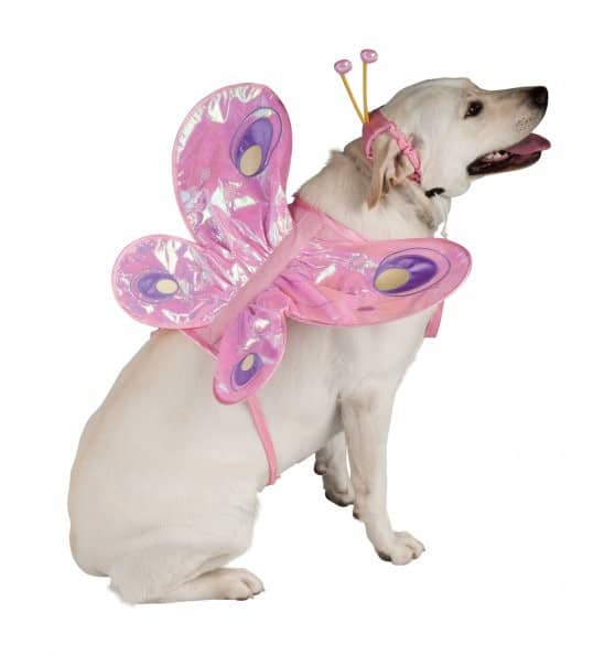 Pink Butterfly Dog Costume