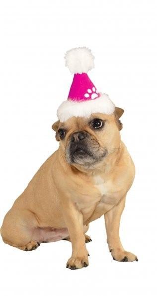 Pink Santa Dog Hat