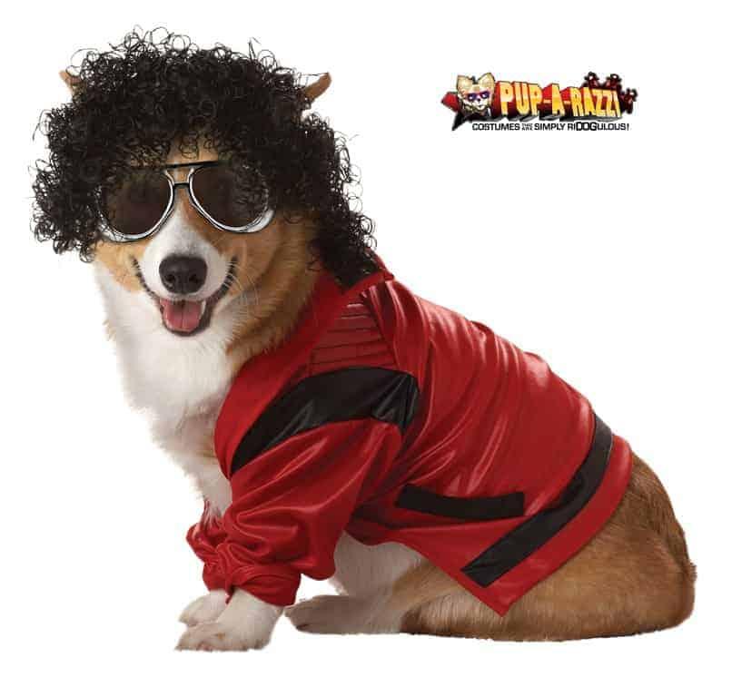 Pop King Dog Costume